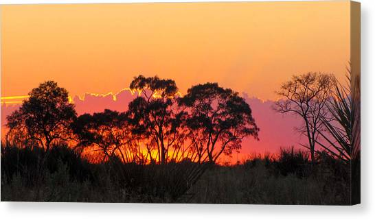 African Sunrise Canvas Print by Karen E Phillips