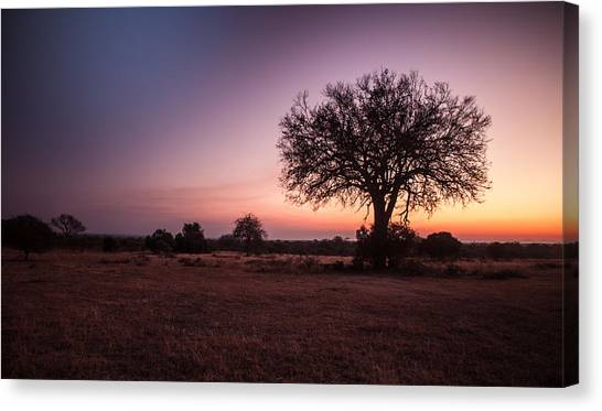African Sunset Canvas Print by Craig Brown