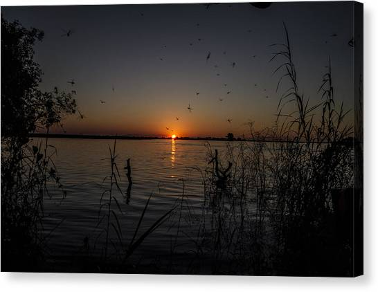 African Sunset Canvas Print