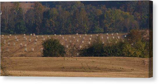 After The Harvest Canvas Print by Doug Hubbard
