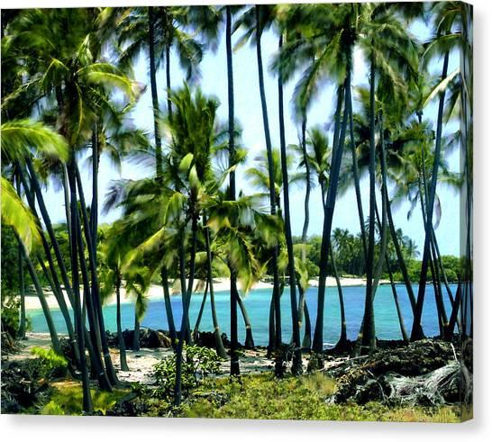 Afternoon At Kakaha Kai Canvas Print