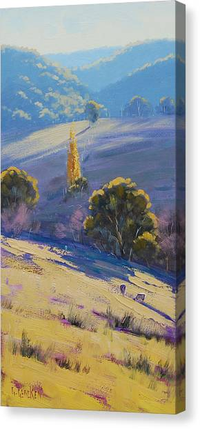 Homestead Canvas Print - Afternoon Light Grazing by Graham Gercken