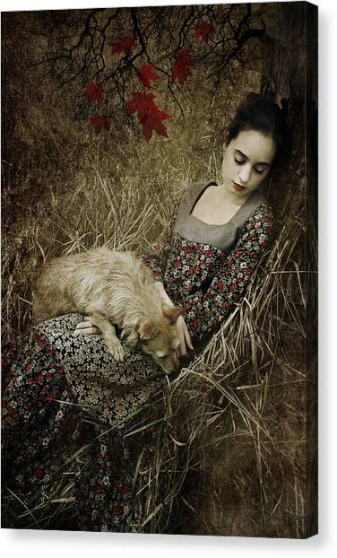 Sleep Canvas Print - Afternoon Nap by Cambion Art