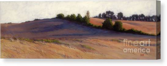 Afternoon Shadows - Airlie Road Canvas Print