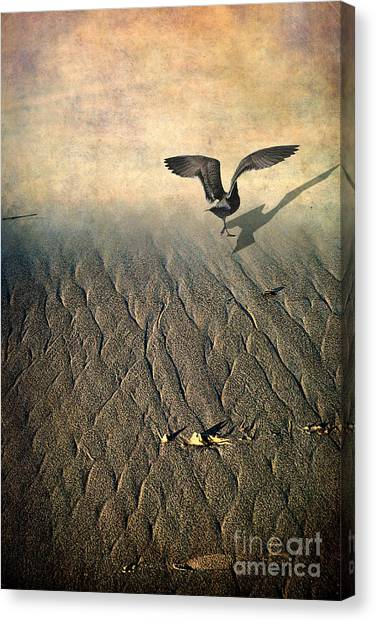Against The Tide Canvas Print