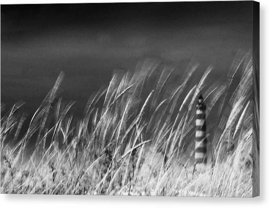 Against The Wind Canvas Print by Rui Correia