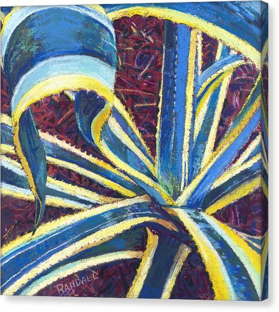 Agave II Canvas Print