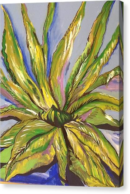 Agave Canvas Print by Karen Carnow
