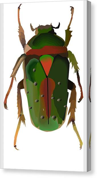 Beetles Canvas Print - Ai Beetle by Terry Pelch