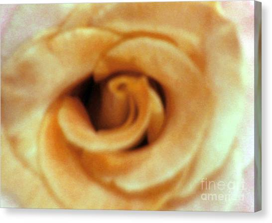 Airbrush Rose Canvas Print