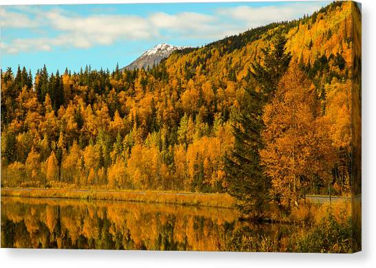 Ak Fall Canvas Print