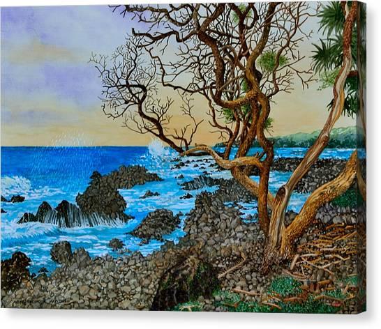 Akini Kinau Shoreline Maui Canvas Print