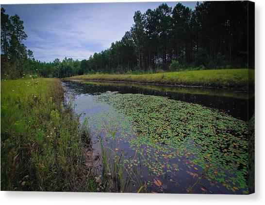 Alabama Country Canvas Print