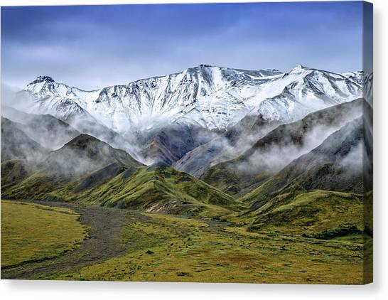 Denali Canvas Print - Alaskan Dream by Rick Berk