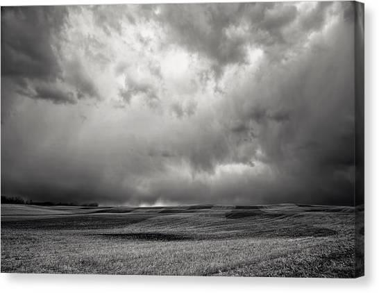 Alberta Field Canvas Print