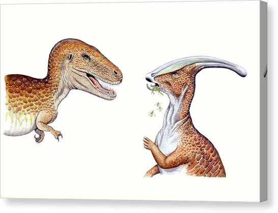 Albertosaurus Canvas Print - Albertosaurus And Parasaurolophus by Deagostini/uig