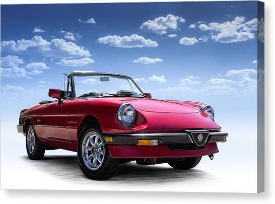 Spiders Canvas Print - Alfa Spider by Douglas Pittman