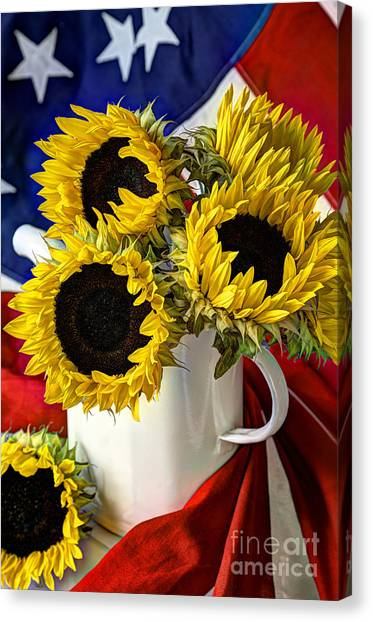 All American Sunflowers Canvas Print