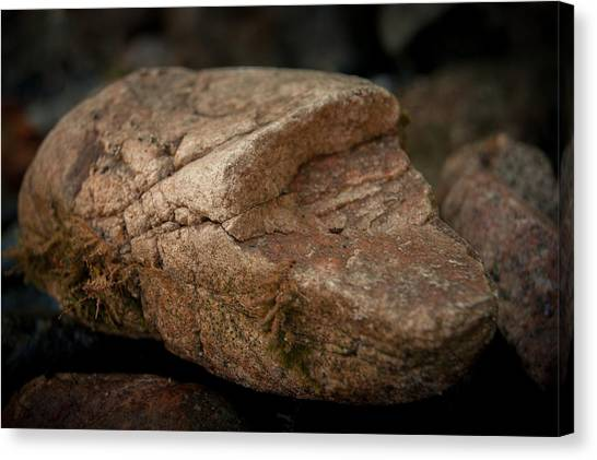 All It's Cracked Up To Be Canvas Print