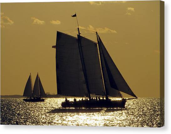 All Sails Sunset In Key West Canvas Print