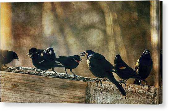 Blackbirds Canvas Print - All The Usual Suspects by Susan Capuano