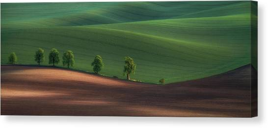 Panorama Canvas Print - Alley by