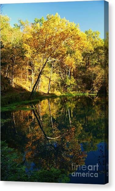 Alley Spring In Autumn Canvas Print
