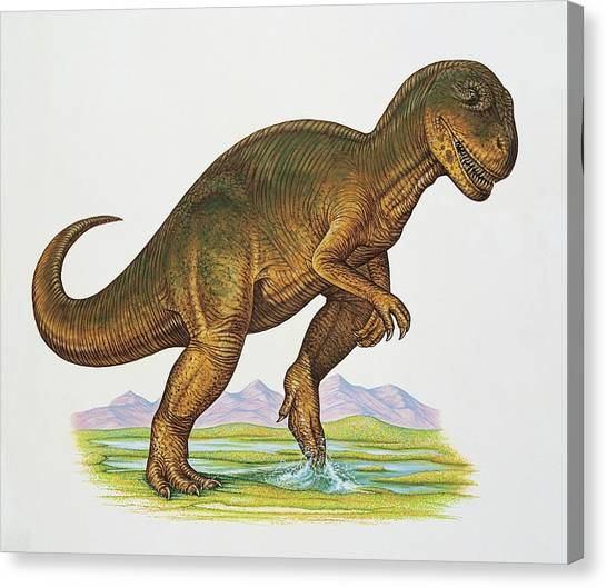 Allosaurus Dinosaur Canvas Print by Deagostini/uig/science Photo Library