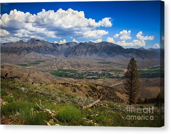 Hydrothermal Canvas Print - Alluvial Fan by Robert Bales
