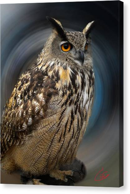 Almeria Wise Owl Living In Spain  Canvas Print