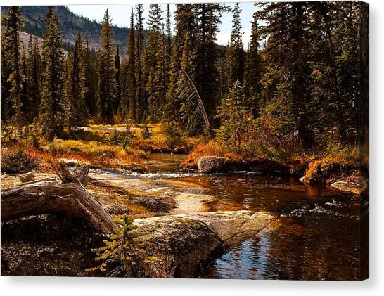Almost Perfect Canvas Print by Randolph Fritz