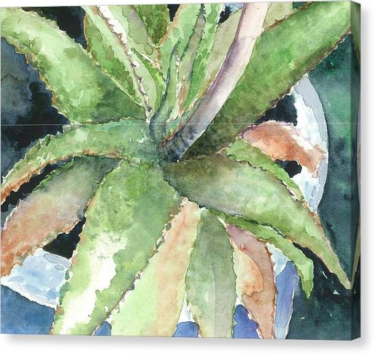 Eleuthera Art Canvas Print - Aloe by Maria McBride
