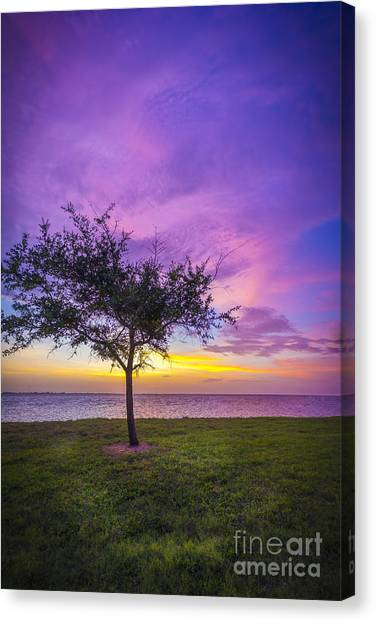 Thunder Bay Canvas Print - Alone At Sunset by Marvin Spates