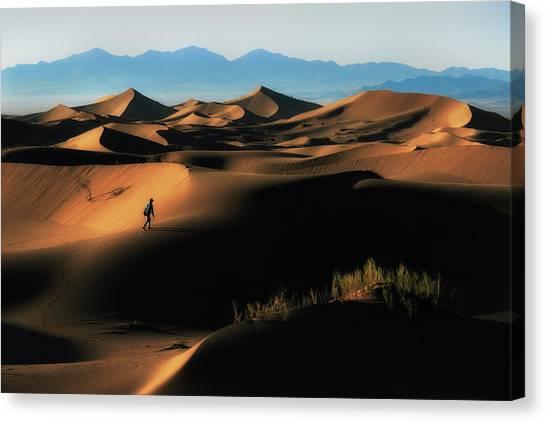 Walk Canvas Print - Alone In Nature by Babak Mehrafshar (bob)