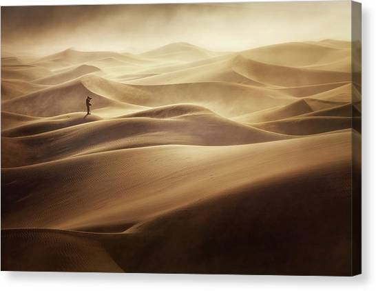 Sand Dunes Canvas Print - Alone by Mirko Vecernik
