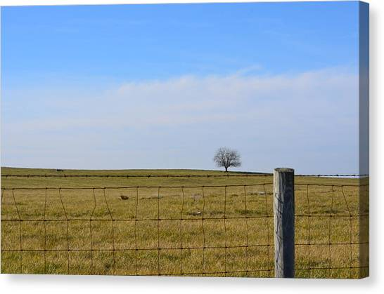 Alone Or Standing Out Canvas Print