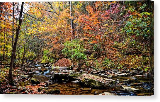 Along Fall Creek Canvas Print