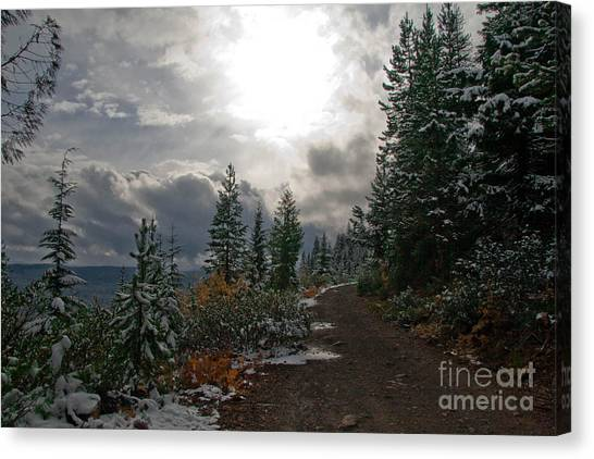 Along Ridge Road Canvas Print by Cari Gesch