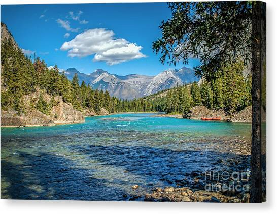 Along The Bow River Canvas Print
