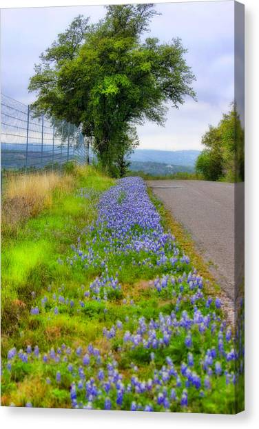 Along The By Ways Canvas Print