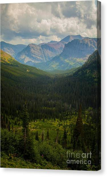 Along The Path To Iceburg 18 Canvas Print by Natural Focal Point Photography