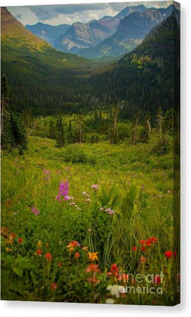 Along The Path To Iceburg Lake 17 Canvas Print by Natural Focal Point Photography