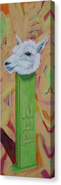 Alpaca Pez Canvas Print