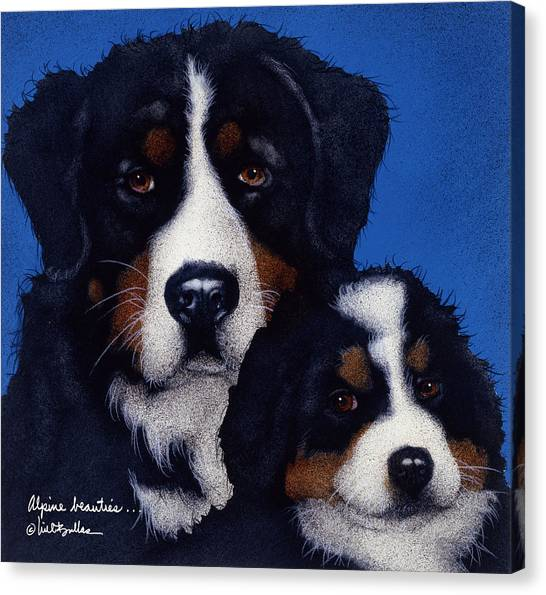 Bernese Mountain Dogs Canvas Print - Alpine Beauties... by Will Bullas