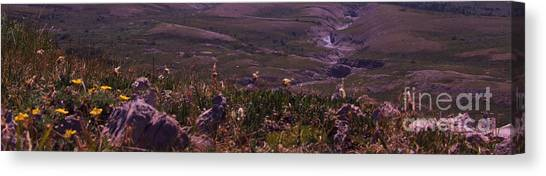 Alpine Floral Meadow Canvas Print