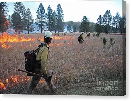 Alpine Hotshots Ignite Norbeck Prescribed Fire Canvas Print
