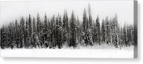 Winter Scene // Whitefish, Montana  Canvas Print