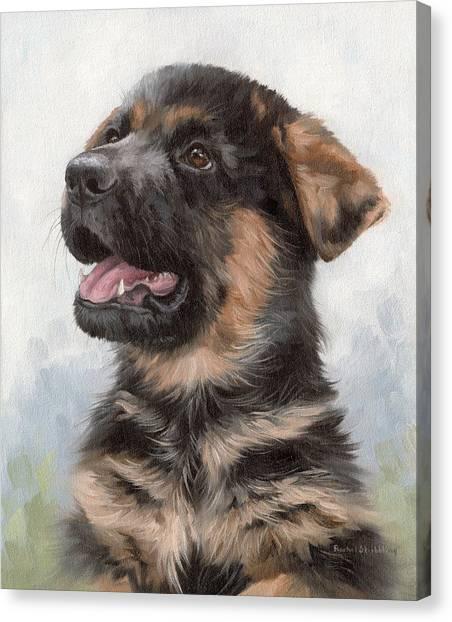 Alsatian Puppy Painting Canvas Print