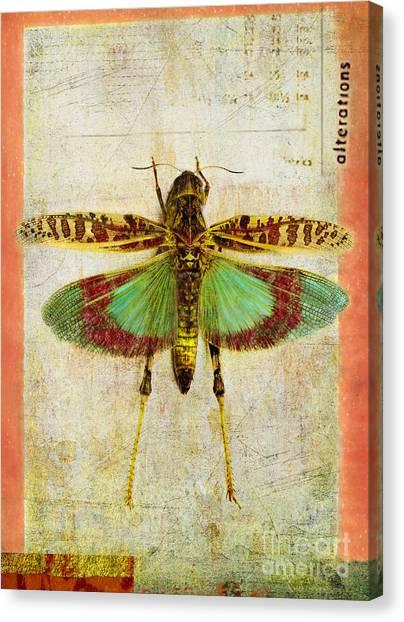 Grasshoppers Canvas Print - Alterations by Elena Nosyreva