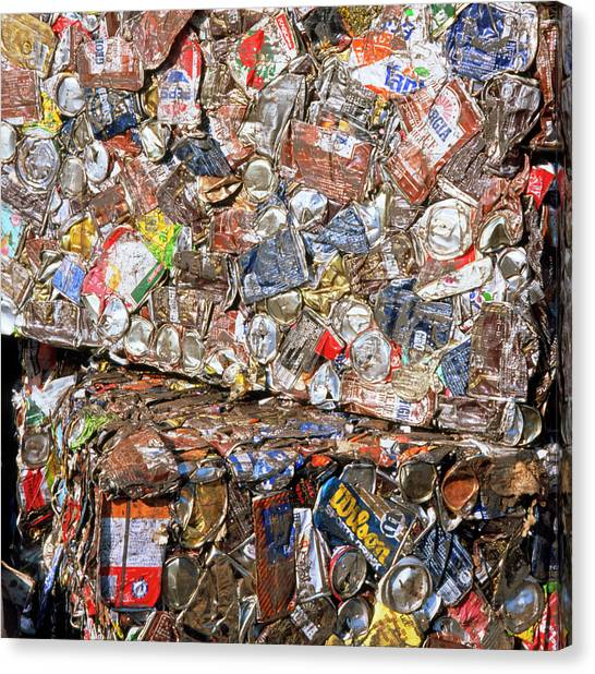 Aluminium Cans For Recycling Canvas Print by Alex Bartel/science Photo Library